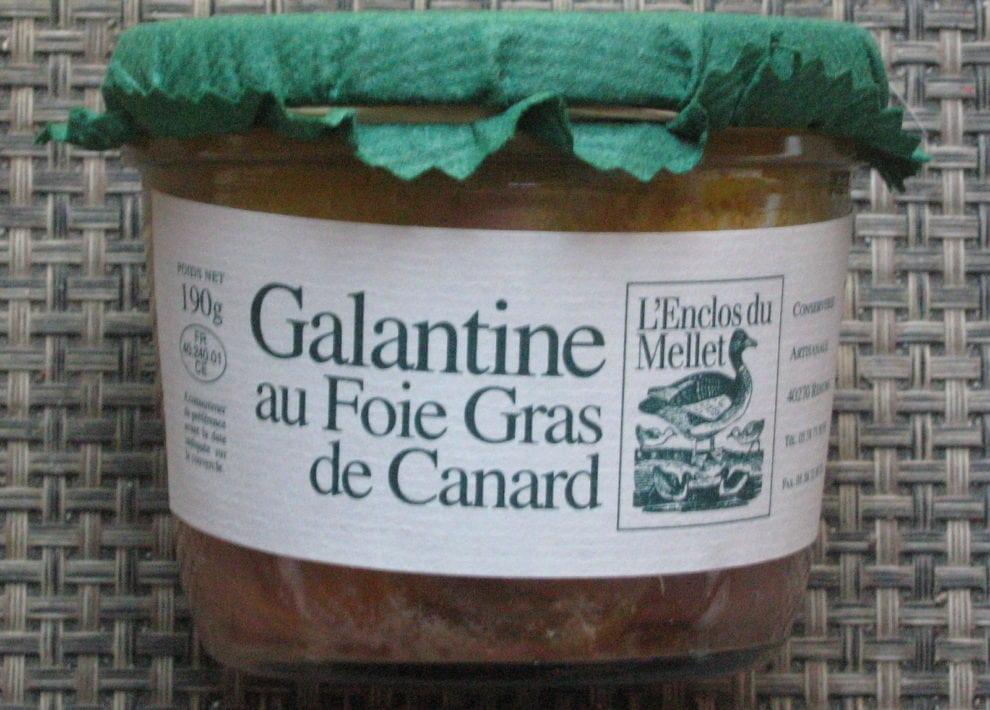 Galentine de canard au foie gras